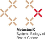 MetastasiX_web_gross